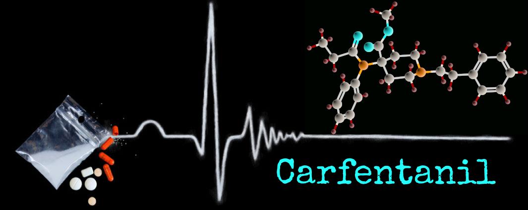 Carf-Banner